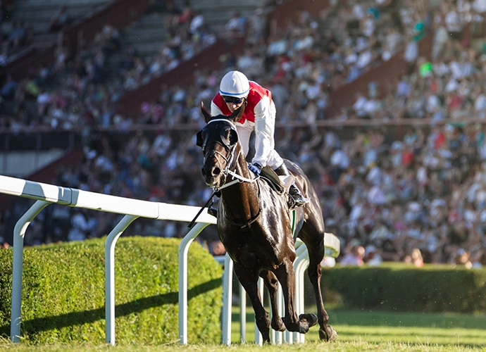 A racing jockey in racecourse
