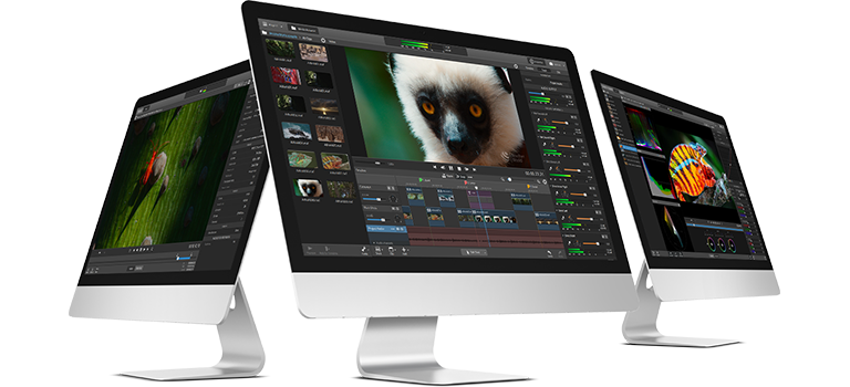 Sony Catalyst Production Suite software shown on three computer screens.