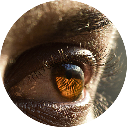 A close-up of a human eye