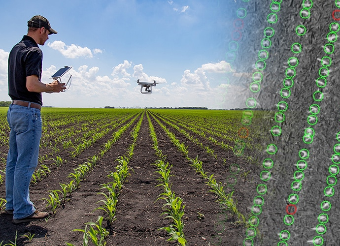 Agronomist using tablet to control drone flying over crop field