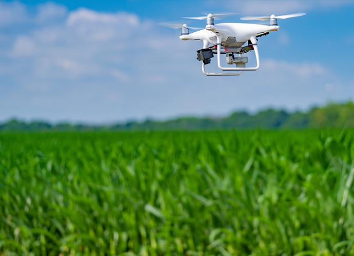 Drone flying low over a crop field