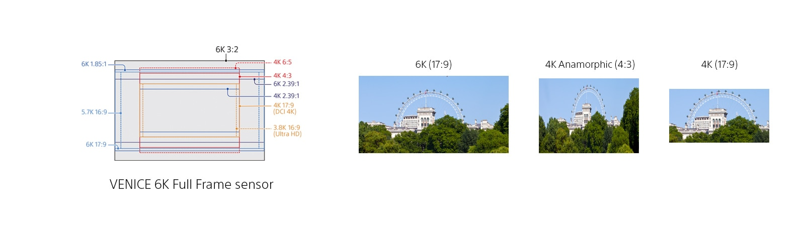 Diagram showing a variety of different image sizes that can be shot using a full-frame sensor.