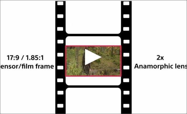 Illustration of anamorphic operation with FX9