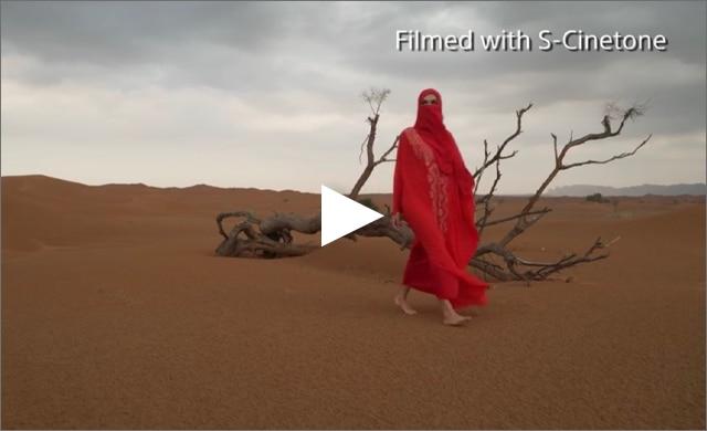 S-Cinetone example desert scene