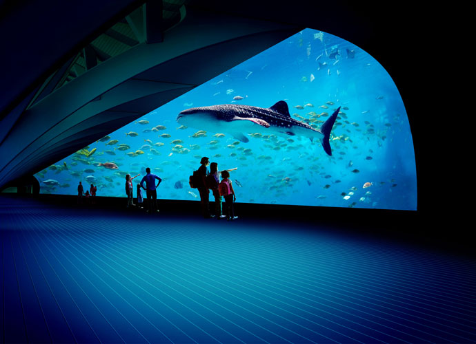 Several families standing in a gallery viewing a projected display of an aquarium