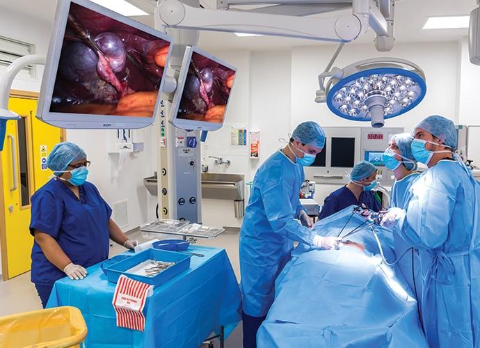 Cirurgiões olhando para dois LMD-X3200MD com braço articulado que exibem uma imagem cirúrgica em uma sala de operação bem iluminada