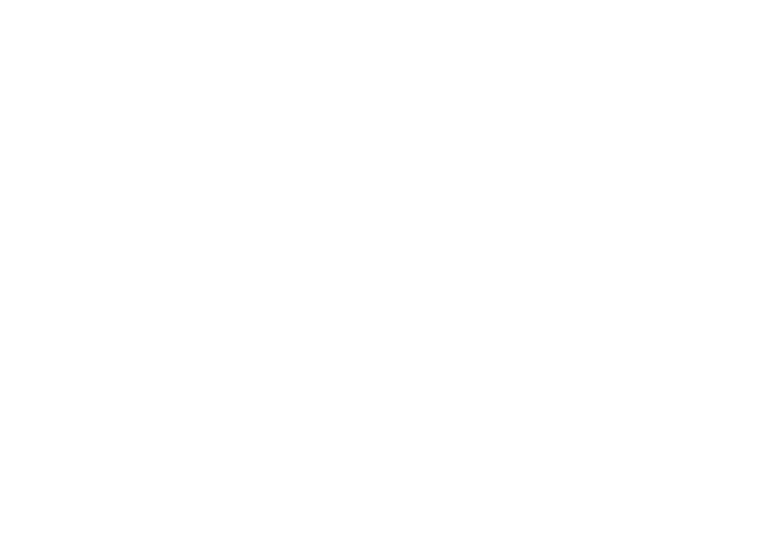 Web icon of the globe